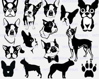 Boston Terrier svg - Boston Terrier vector - Boston Terrier digital clipart for Design or more, files downlad eps, svg, jpg, png