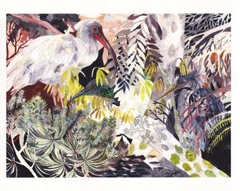 Deep Woods - Large Archival Print