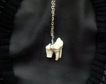 Wolf Tooth Molar Necklace