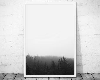 Forest Wall Art, Forest Print, Nature Photography, Woodland Print, Forest Poster, Nature Print, Woodland Wall Art, Nature Poster, Forest Art