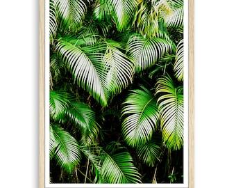 Palm Leaf, Palm Print, Palm Leaf Print, Leaf Print, Palm Tree, Botanical Print, Tropical Poster, Botanical Art, Tropical Leaf, Tropical Art