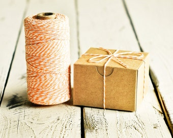 Baker's Twine in Peach & White - 10 Yards - Bakers Packaging Gift Wrapping String Cord Trim Ribbon Pretty Vintage Party Crafting Decor