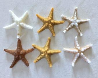 Lot of 6  Realistic Knobby Starfish Soaps - Beach, Soap, Nautical, Beach Wedding, Wedding Favors, Beach Theme, Guest Soap, Starfish