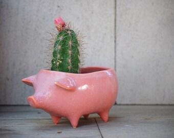Ceramic Pig Planter - Gifts for gardeners - Green thumb gift -  Vintage Design - Succulent Planter - Retro Sponge Holder - Ceramic planter