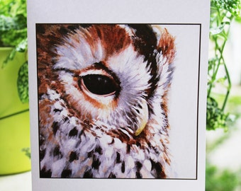 Spotted Owl Card - 5x7""