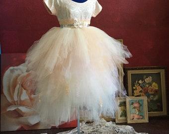 Blush and ivory dress, wedding dress, blush wedding dress, ballet dress, tutu, dress for wedding, 1950's dress, refashioned, swan dress
