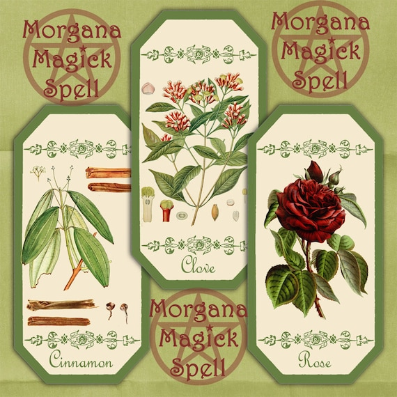 Herbal Apothecary Labels - Printable