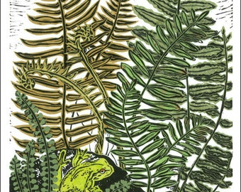 Poster, Card, Frog in the Ferns,  wild, natural, Cool Forest Floor, amphibian.  SKU#101