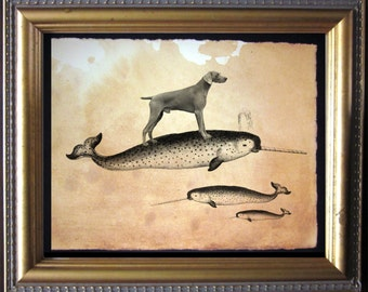 Weimaraner Dog Riding Narwhal - Vintage Collage Art Print on Tea Stained Paper dog art - dog gifts -- father's day gift- graduation gift