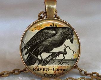 Raven Goth necklace, raven pendant Halloween jewelry raven jewelry Samhain blackbird raven necklace key ring key chain key fob