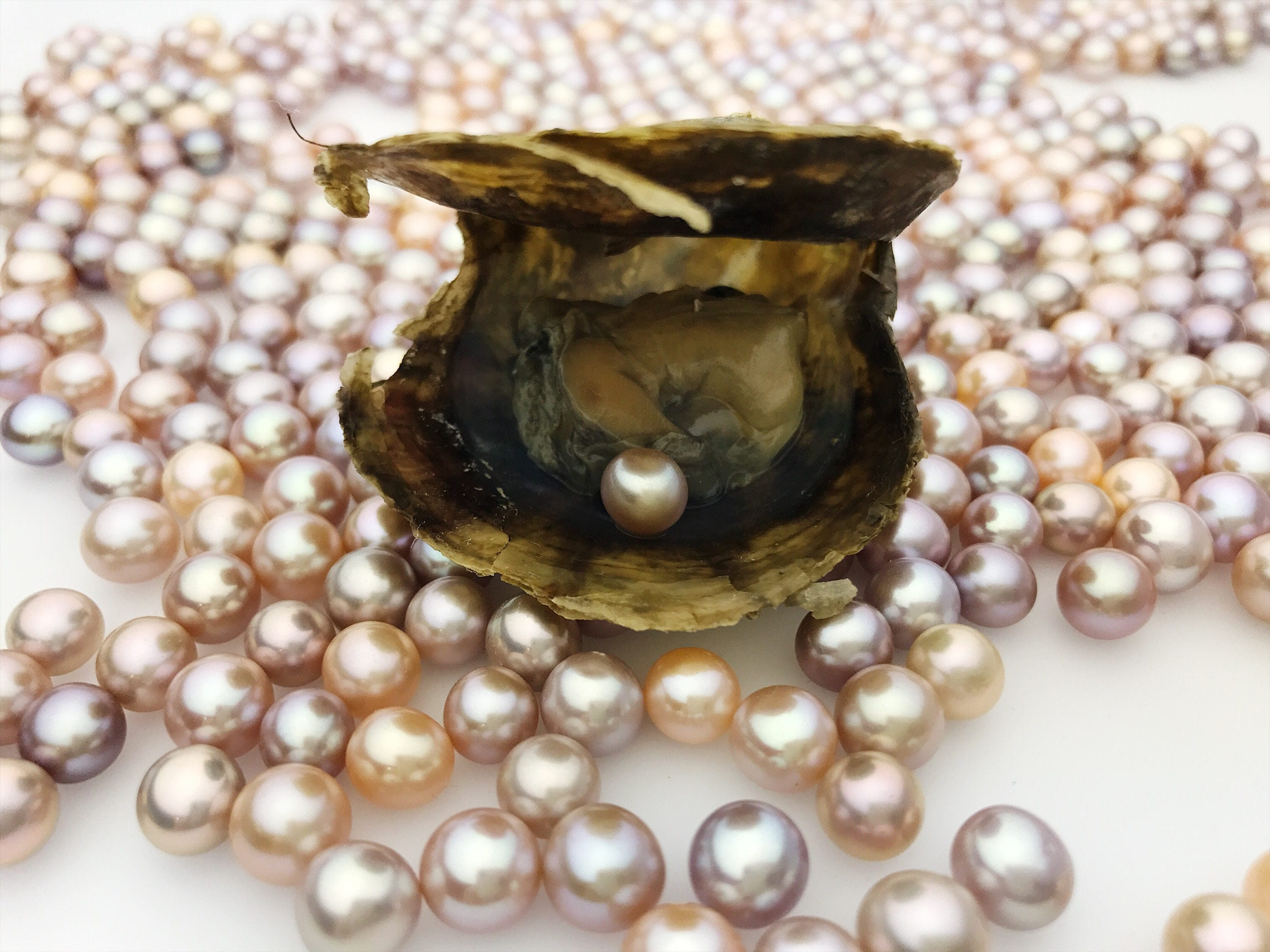 pearl jewellery sea akoya water rousseau seawater par perles pearls ring japanese