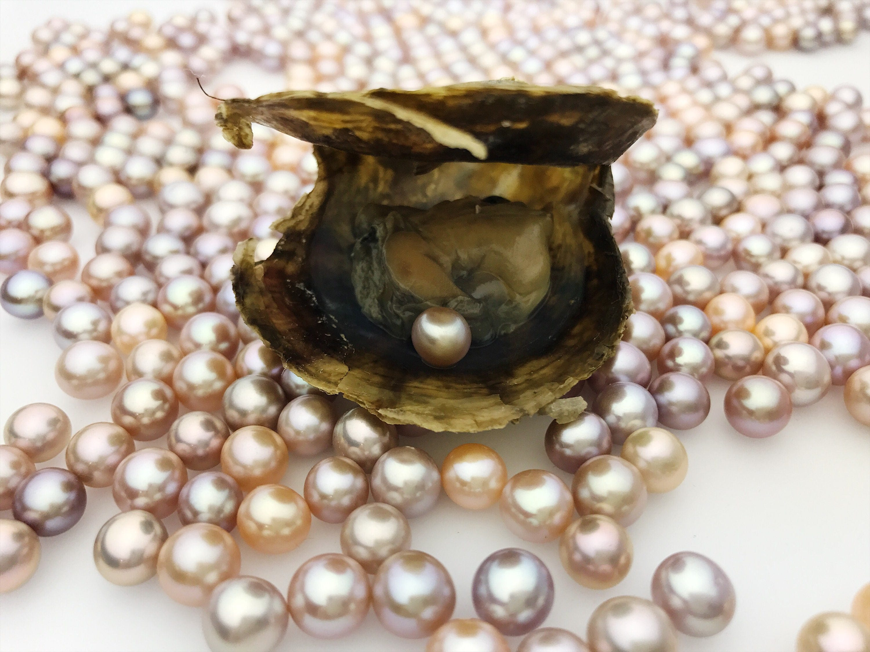 suede shambhala natural made pearls of item leather with online bracelet shop