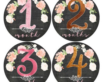 Baby Girl Month Stickers Floral Stickers Baby Stickers Girl Milestone Keepsake stickers Chalkboard and Glitter Baby Shower Gift