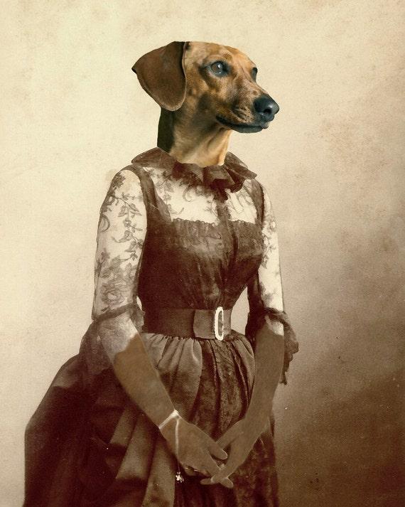Perro salchicha un muy DASCHING señora perro victoriano