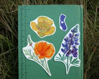 California Wildflower Stickers: Three Vinyl Stickers, California Poppy, Silver Lupine, Mariposa Lily