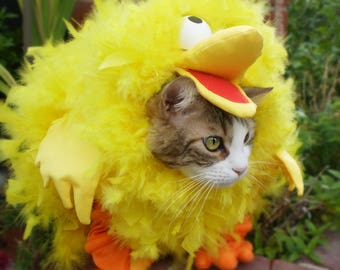 Big Yellow Bird Hoodie for Dogs