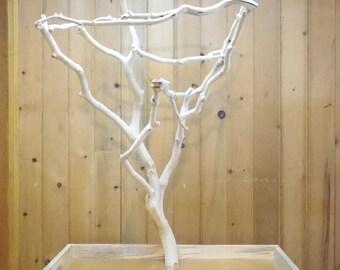 Manzanita bird perch, playstand