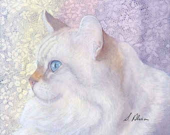White cat 8x10 signed art print - grace in the morning