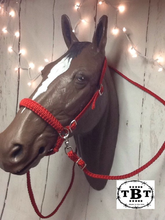 Types of Bridles Hackamore - University of Kentucky