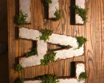 """12"""" Faux metal letters with moss!"""