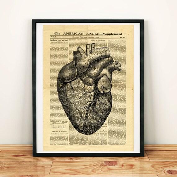Menschlichen Herzen Anatomie Wissenschaft Medizin antike