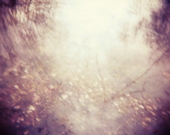 8x8 Metallic foggy, golden woods print