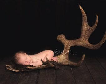 Antler Newborn Photography Digital Backdrop antlers, hunter, rustic, baby, deer, moose