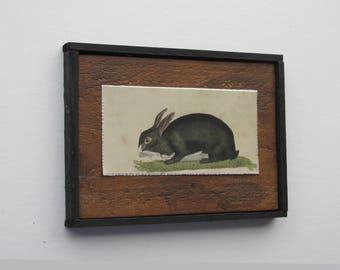 "wild rabbits - home decor - ""Vintage Rabbit""- country chic - kitchen farmhouse wall art"