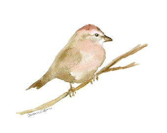 Sparrow Watercolor Painting - 7x5 - Giclee Print Reproduction - Bird Art - Woodland Animal