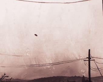 UFO over McMinnville, OR, USA 1950