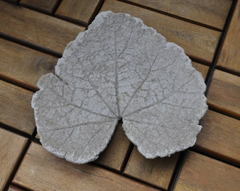 Concrete imprint - Hollyhock