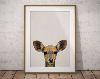 Baby Deer Nursery Print Art, Baby Deer Nursery Decor, Baby Deer Nursery Art, Baby Deer Printable, Nursery Baby Deer Print Art, Baby Deer art