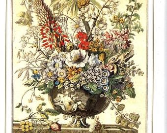"December Flowers Art Print -12 MONTHS of FLOWERS- 1700s Botanical Illustration- Winterthur Museum wedding newborn baby gift idea- 7.75 x 10"""