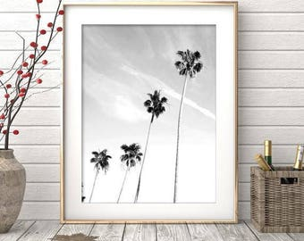 Palm Tree Print - Palm Beach Wall Art, Black And White Photo, Digital Download, Minimalist Art, Beach Print, Hawaii Print, Holiday Decor