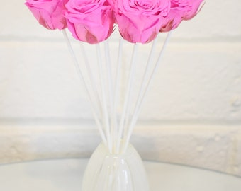 Linge White Hot Pink Rose Fragrance Reed Diffuser by MelroseFields