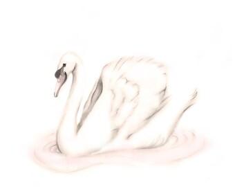Swan Nursery Art, Pink Nursery, Sweet Blush, Baby Girl Wall Decor, Bird, White Swan, Baby Animal Print, Baby Shower, Wedding, Animal Sketch