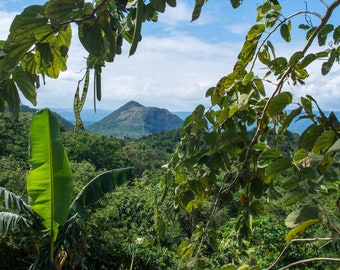 Volcano hidden in the Jungle - The Philippines, south east asia, tropical destination, green landscape, volcano