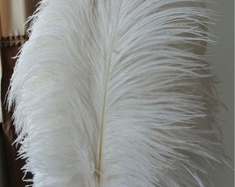 white ostrich feather 100 pcs 18-20inches for wedding party centerpiece decor craft supply