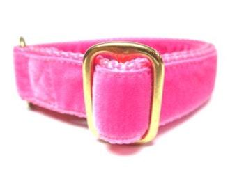 """Houndstown 1"""" Shocking Pink Velvet Tag Collar, Adjustable"""