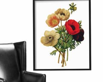 Botanical Print - Floral Redoute Prints - Vintage Wall Art - Botanical Art Print - Poster - Wall Decor - Art Print - Wall Art Print - Gift