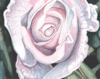 White Rose ORIGINAL watercolor painting, happy home decor, FREE shipping
