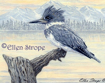 ACEO Card, Giclee print, Kingfisher, bird art, bird ACEO, ACEO cards, bird decor, Ellen Strope, prints, art