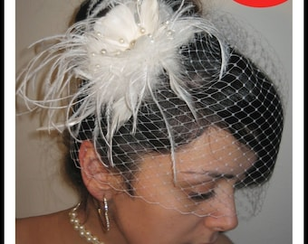 Elegent detachable birdcage veil with feather fascinator accented with pearls retail value of 120dollars