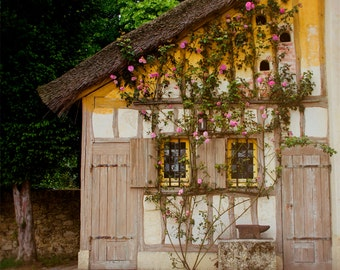 Versailles Photography, Rustic Farmhouse Decor, Yellow Ochre, Chateau, Climbing Roses, Pink, French Home, Romantic, Wall Decor, Cottage Art