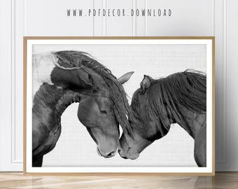 Horse Print, Black and White Photography, Horse Print Wall Art, Wild Horse Photo, Wilderness Print, Equestrian, Printable Art, Two Horses