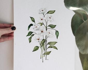 Original White Watercolor Flowers