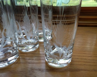 8oz HIGHBALL GLASS, Etched, Set of 7, Oats pattern, Vintage