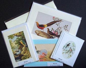 Five Handmade Bird  blank greetings or note cards (Set 16)
