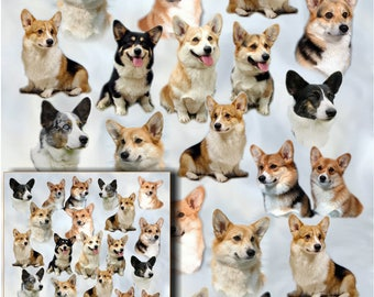 Corgi Dog Gift Wrapping Paper with matching Gift Card