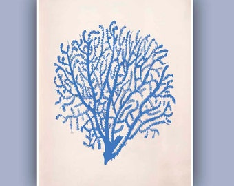 Sea Fan  2 in blue,  Vintage  image print, Blue Print,  Marine Wall Decor, Nautical art,  Collage  Print, Coastal Living, beach cottage